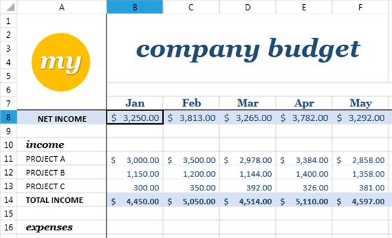 budget for company