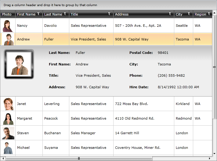Key Features | UI for WPF Documentation by Progress