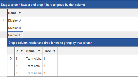 Row Details Template   UI for WPF Documentation by Progress