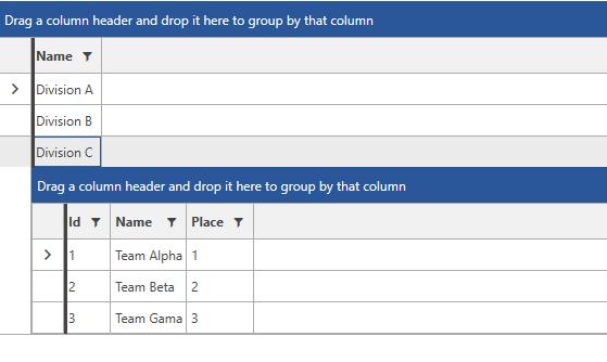 WPF DataGrid | Row Details Template | Telerik UI for WPF